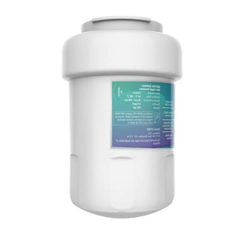 GE Filter Smartwater 2PK